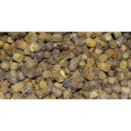 Pierzga pszczela, moc witaminowa z ula, 100 gram, Pyłek kwiatowy i pierzga pszczela,
