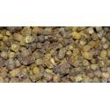 Pierzga pszczela, moc witaminowa z ula, 100 gram